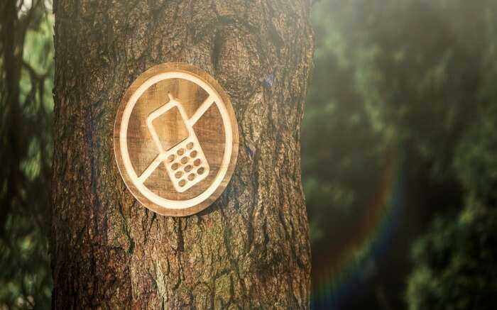 digital detox signboard on a tree trunk
