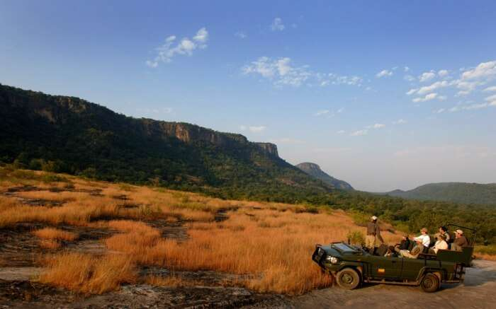 jeep safari in a national park