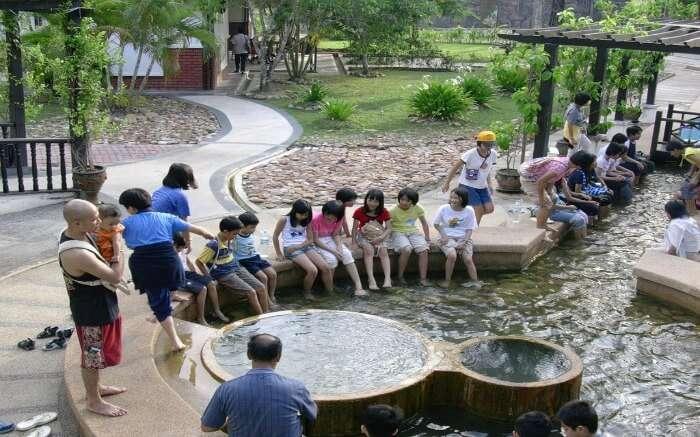kids having fun in hot water spring in Langkawi