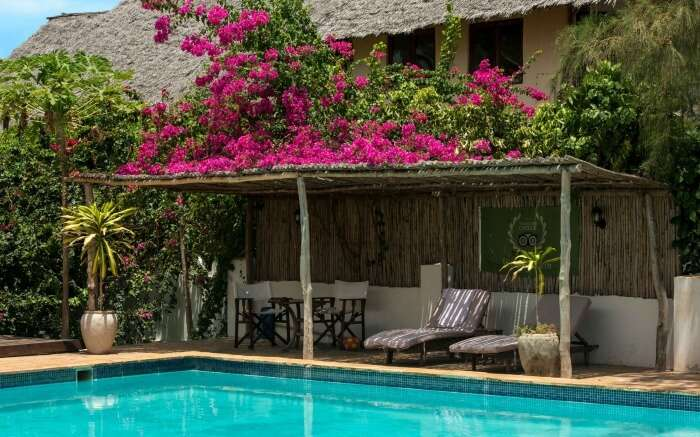 pool area of Zanzibar Retreat hotel decorated with bougainvillea flowers