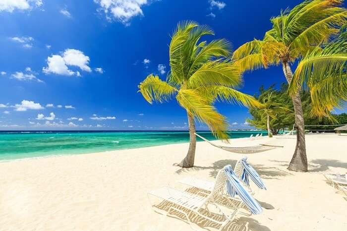 Chairs and palm trees on the Seven Miles Beach on the Grand Cayman island