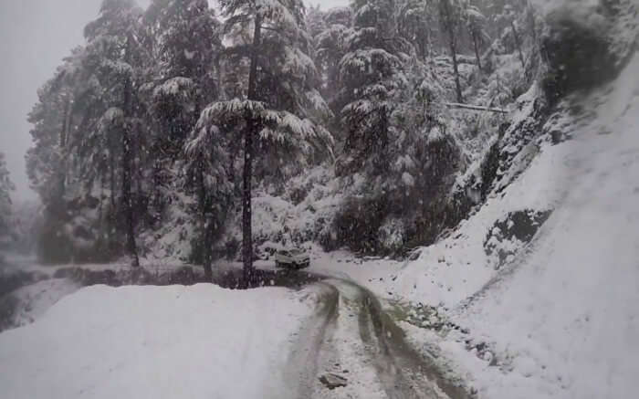snowfall in Kufri on road