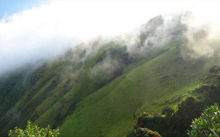 the misty hills of Kemmanagundi