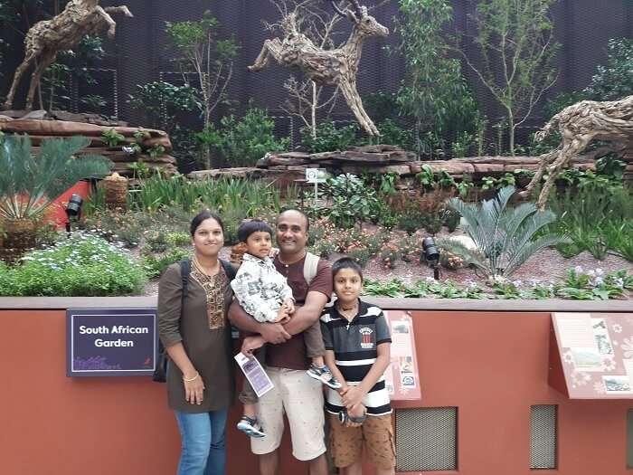 Bird park tour singapore