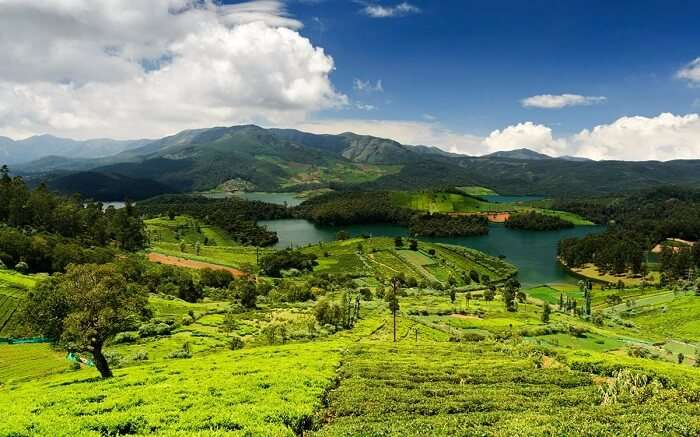 valleys and mountains in Ooty