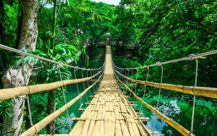 A bridge amid forest in Bohol Island in Philippines