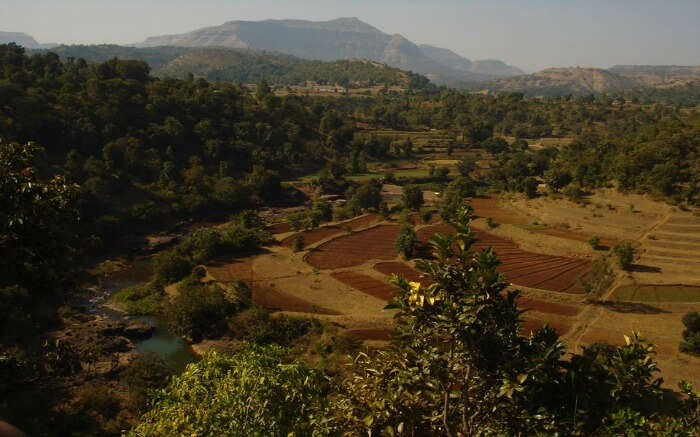 Aerial view of Purushwadi village in Maharashtra