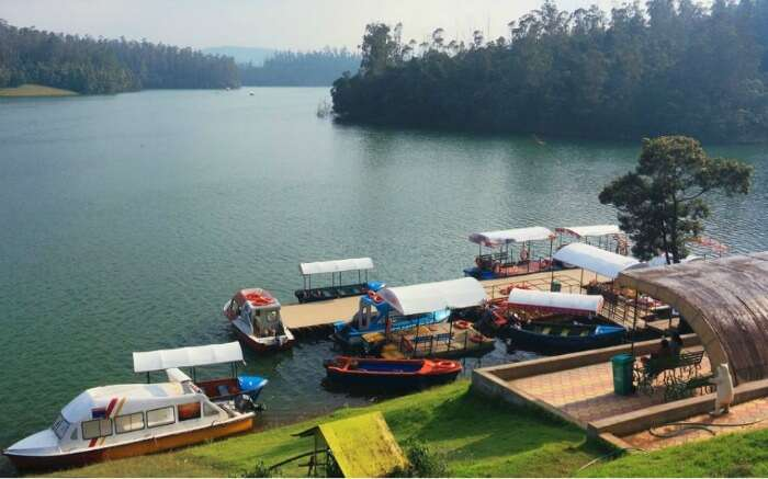 Boats by the side of Ooty Lake