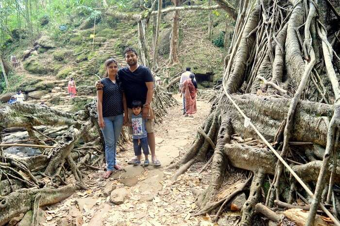 sacred forest in meghalaya