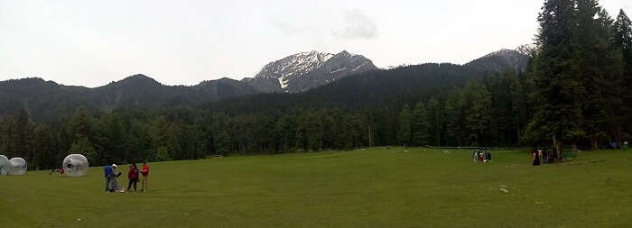 nature in pahalgam
