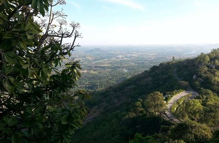 Amid lush green forests and caves