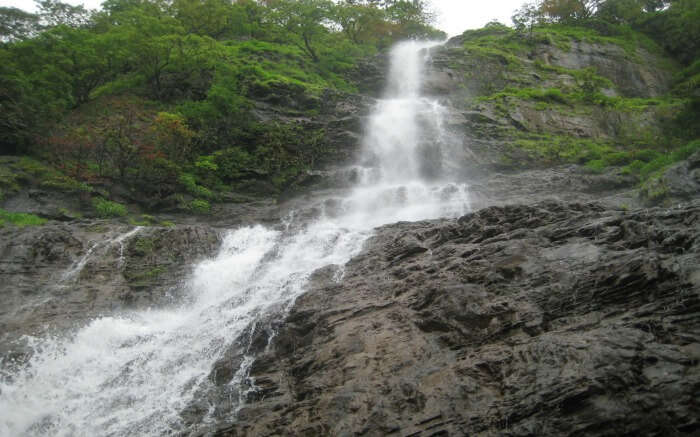 Harvalem Waterfalls surrounded by green jungle
