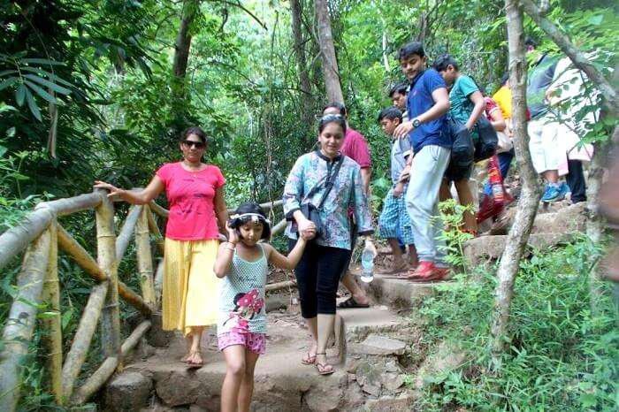 nature park in munnar