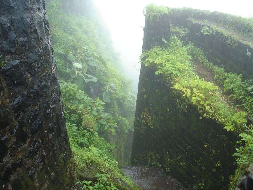 foggy stairs of Tikon Fort covered by grass and moss