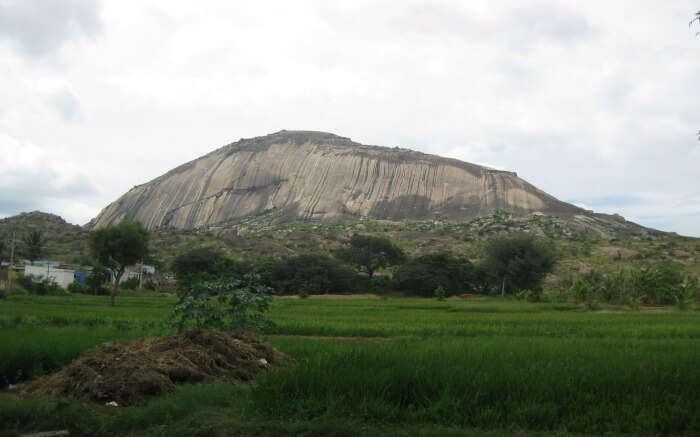 a giant rock hill in Madhugiri