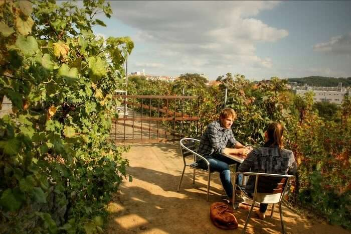 A couple enjoying vine at one of the vineyards in Prague