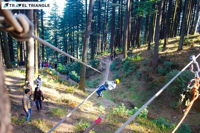 A group of travelers rappelling in the woods of Kanatal