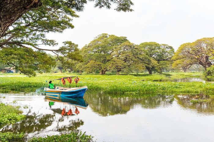 a boat sailing in Madu River
