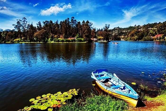 Kodai Lake, Kodaikanal