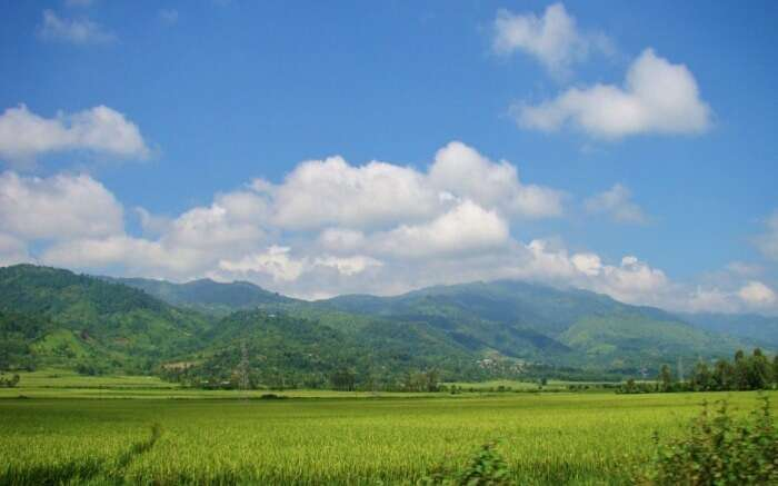 Beautiful mountains and paddy fields of Manipur
