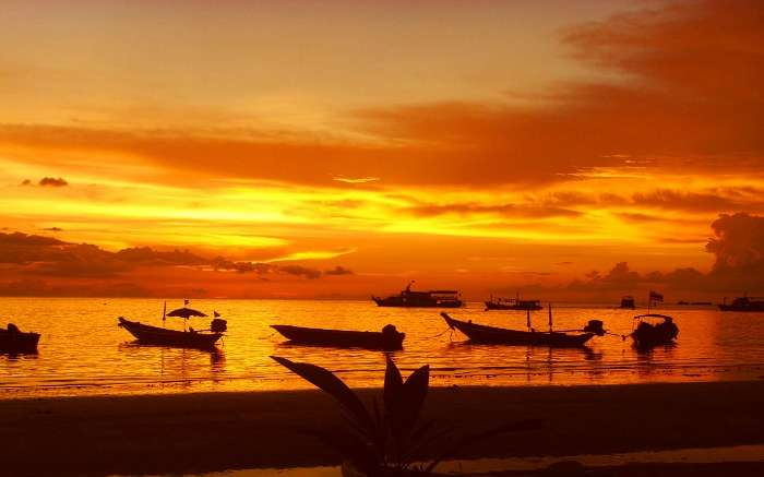 Boats in water during sunset 1