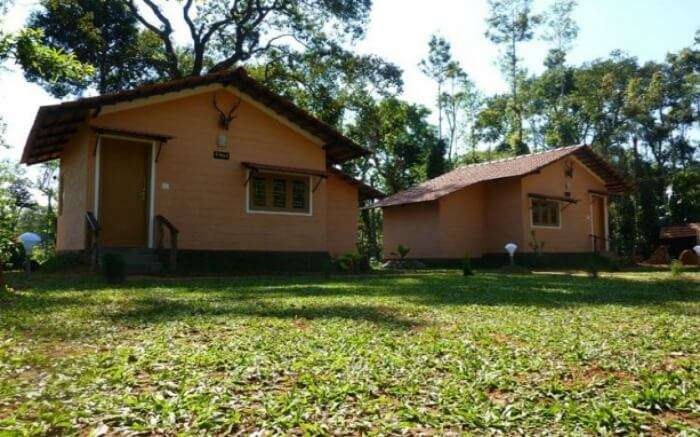 Front view of cottages of Coorg Coffee Camp in Coorg