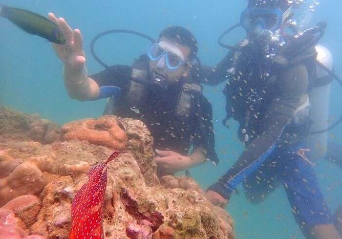 underwater activities in andaman