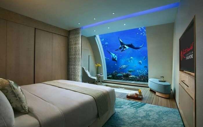 Ocean Suite in Hotel Equarius
