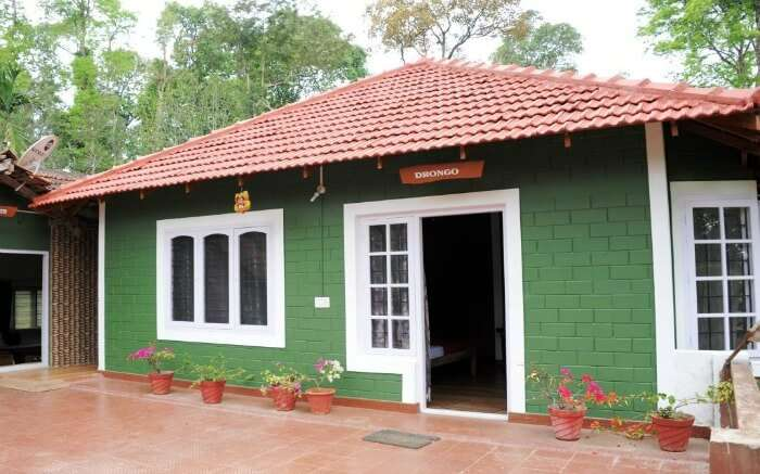 One of the cottages of Chilipili Estate Stay in Coorg district in Karnataka