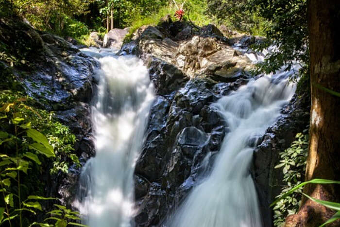 Waterfall Bali Hiking Tour