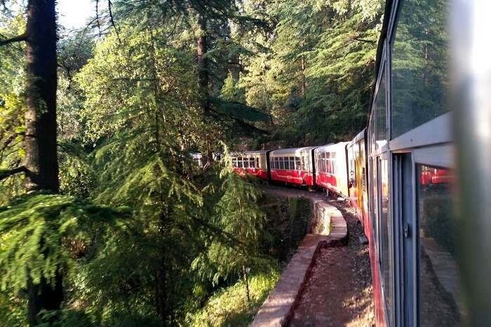 shish enjoying scenic views from kalka shimla train