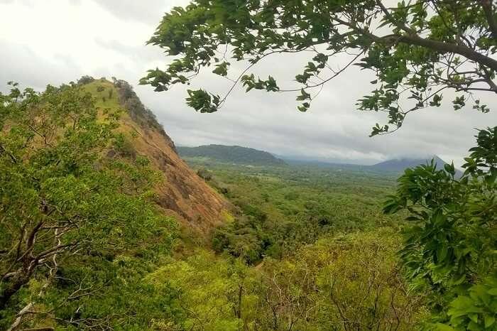 scenery in Sri Lanka