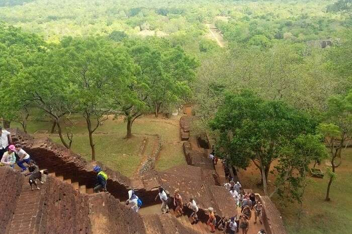 climbing sigiriya rock fort