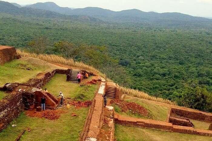 forests in Sri Lanka