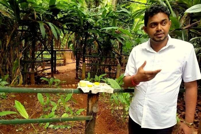sightseeing tours in Sri Lanka
