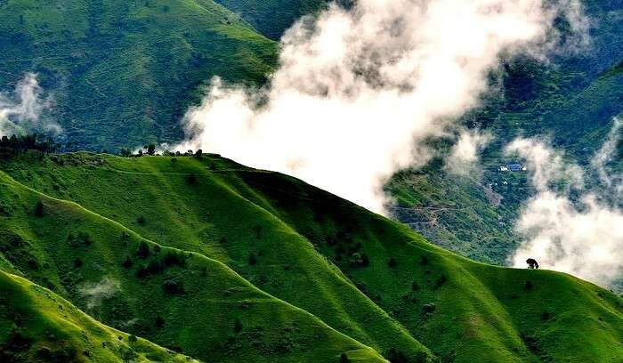 hill station near shimla