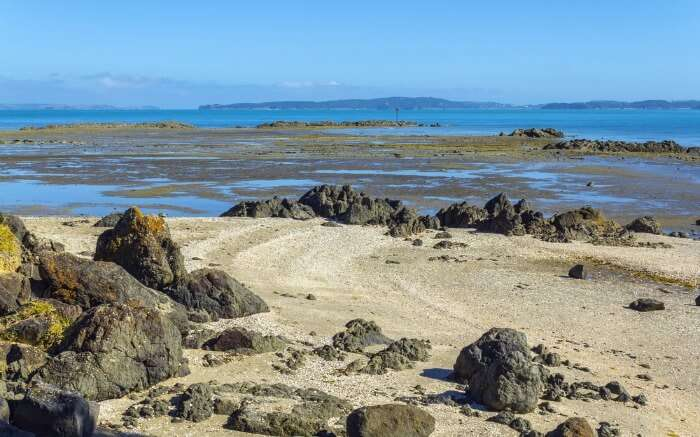 A view of Omana Beach located in Omana National Park in Auckland