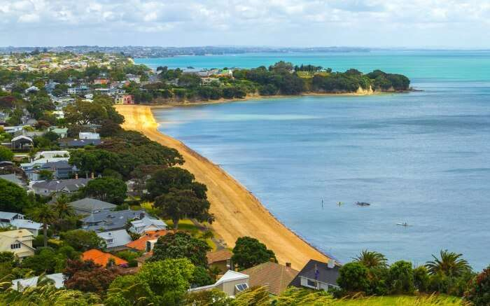 Aerial view of Cheltenham Beach by the city