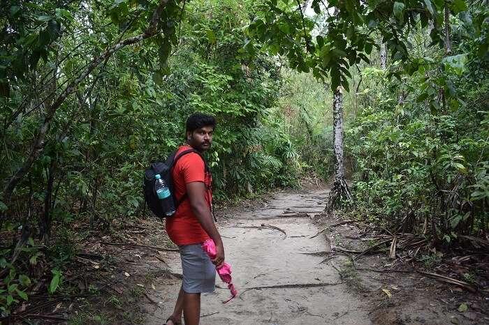 trek to limestone caves