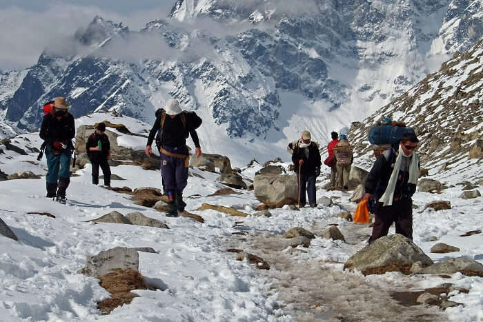 indulge in Dzongri Winter Trek