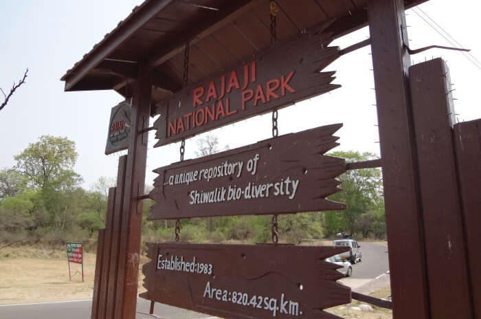 Eco-tourism at Rajaji National Park