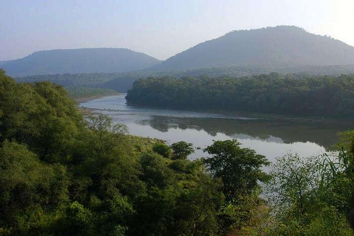 landscapes of gir national park