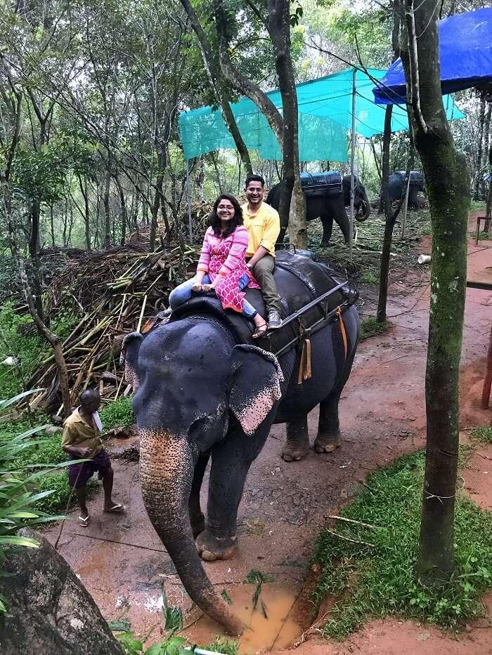 revan aarti kerala elephant ride