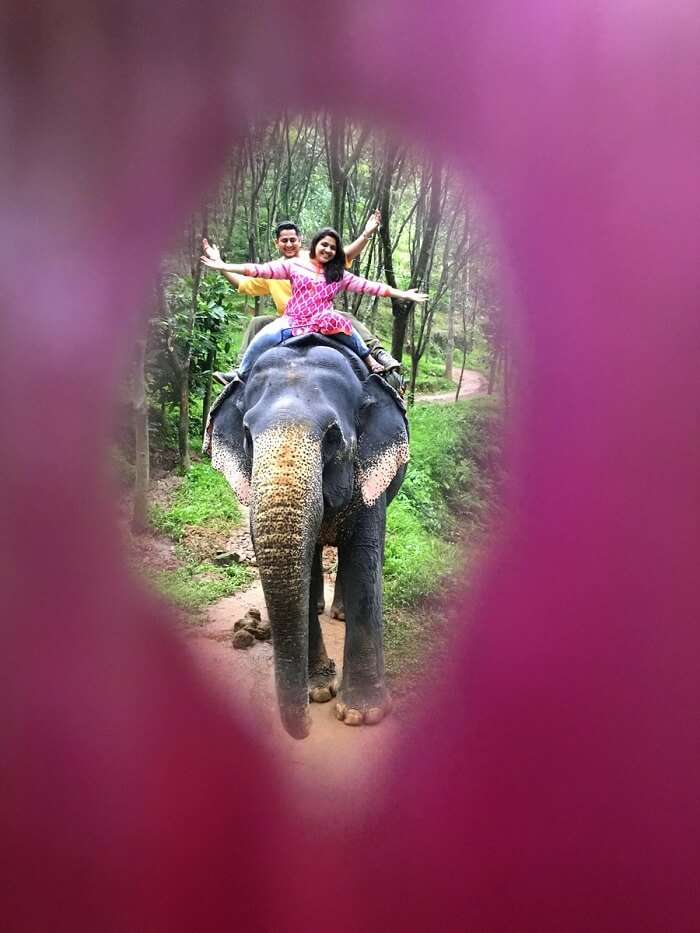 revan aarti kerala elephant riding