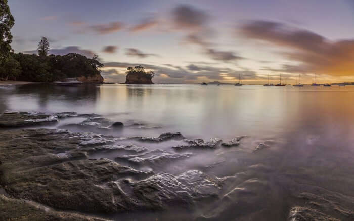 The wonderful evening view of Waiake Beach in Auckland