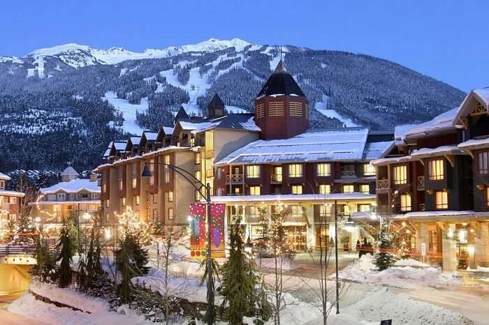 The Delta Whistler In winters