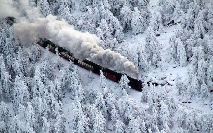 Snow covered surroundings in the route of Trans-Harz Railway in Germany