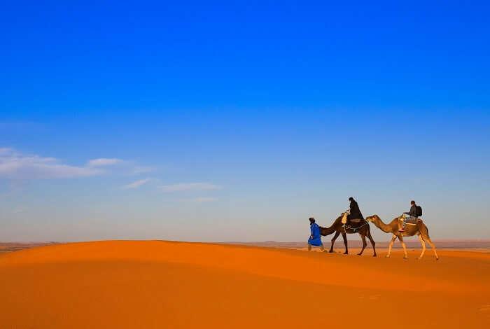 go camel riding in dubai