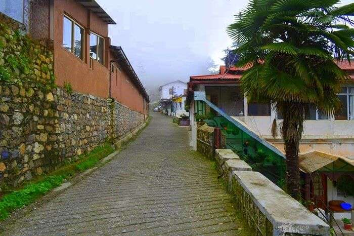 a view of sisters bazaar in Landour in Mussoorie
