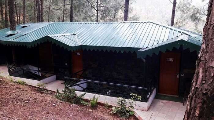 Kasauli Hills Resort